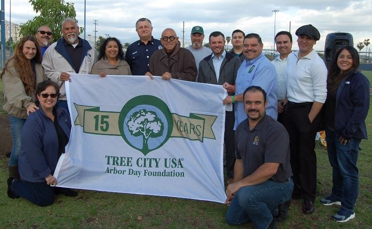 Arbor Day Group