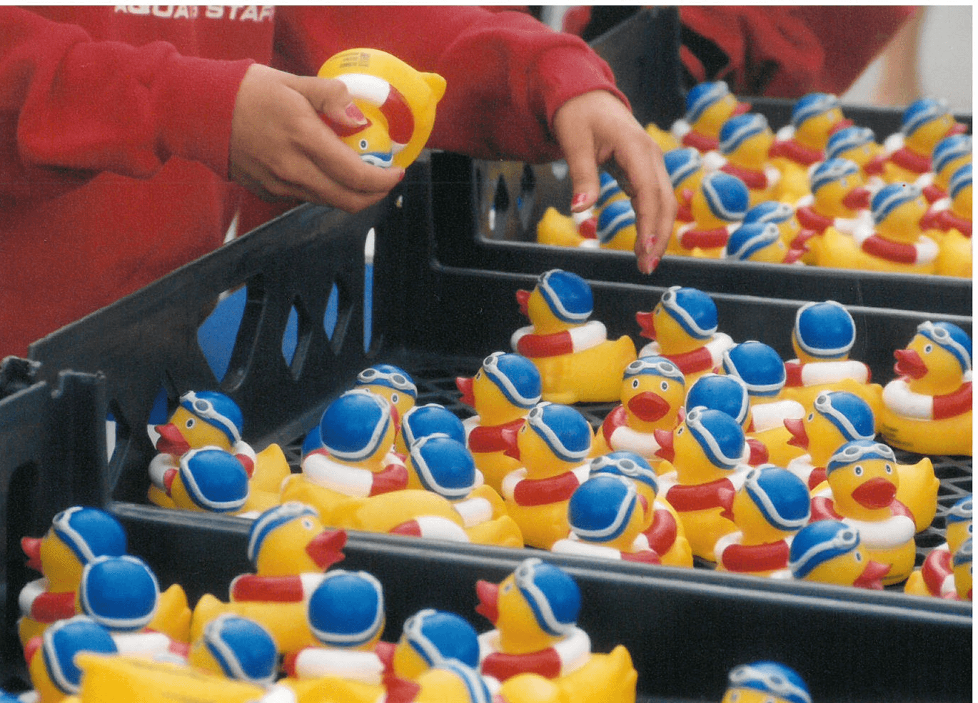 Getting all the ducks ready in a row.